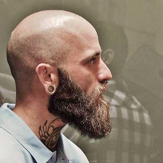 Barbe de Viking chauve