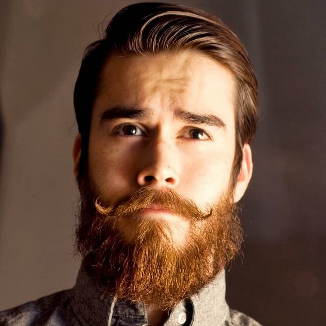 Moustache anglaise Barbe viking