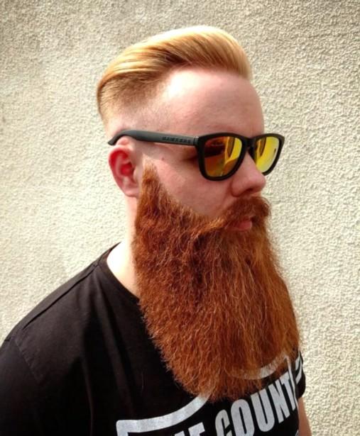Barbe viking à longueur de poitrine